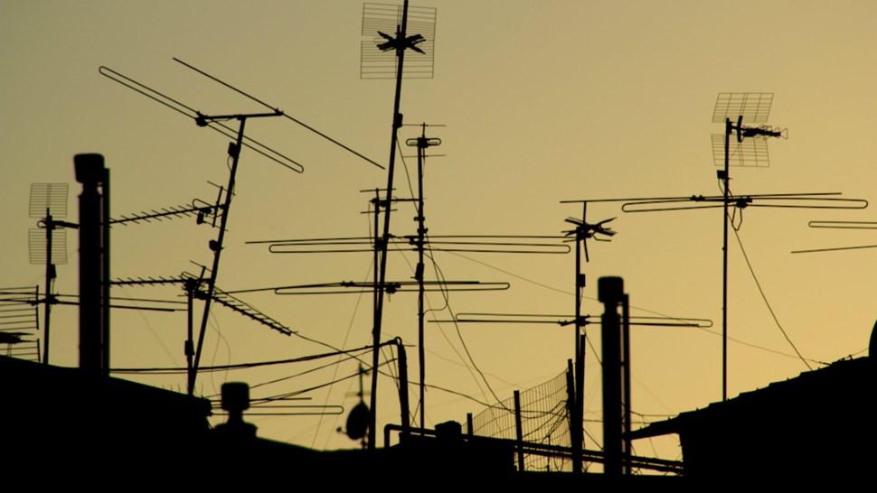 antennaso