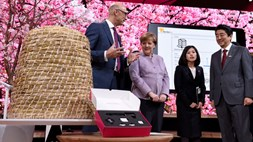 Deutsche Telekom won't let it bee: uses NB-IoT to monitor beehive populations