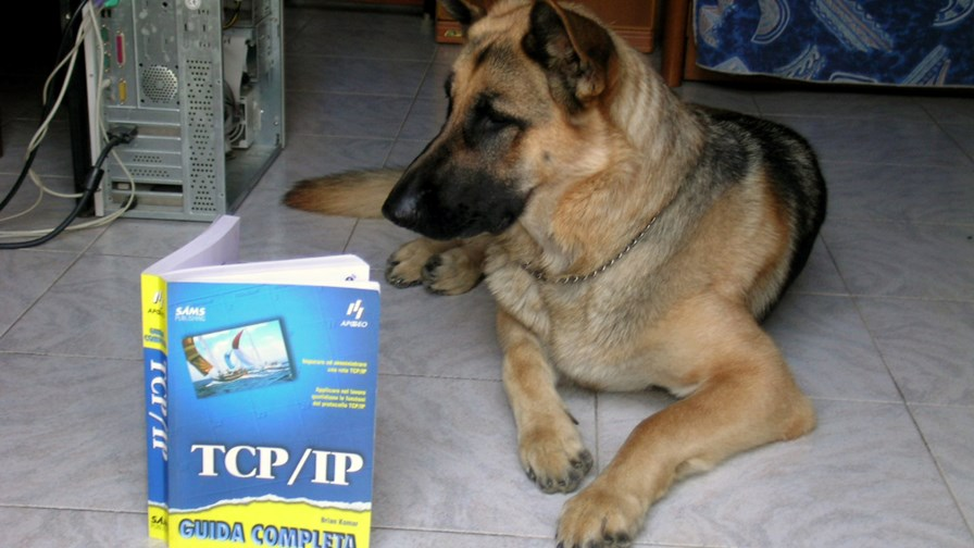 With TCP/IP, nobody knows you're a dog... © cc-licence/Arnaldo Zitti