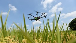 Drone usage in agricultural sector slow to take flight