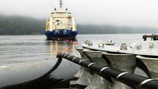 © Flickr/cc-licence/Ocean Networks Canada