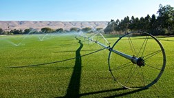 Smart Country: why agri-IoT is one to watch