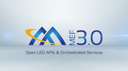 Open LSO APIs and Orchestrated Services
