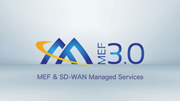 SD-WAN Managed Services