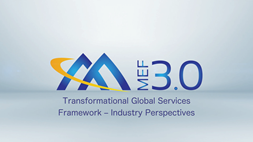 Transformational Global Services Framework – Industry Perspectives