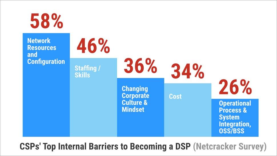Netcracker DSP