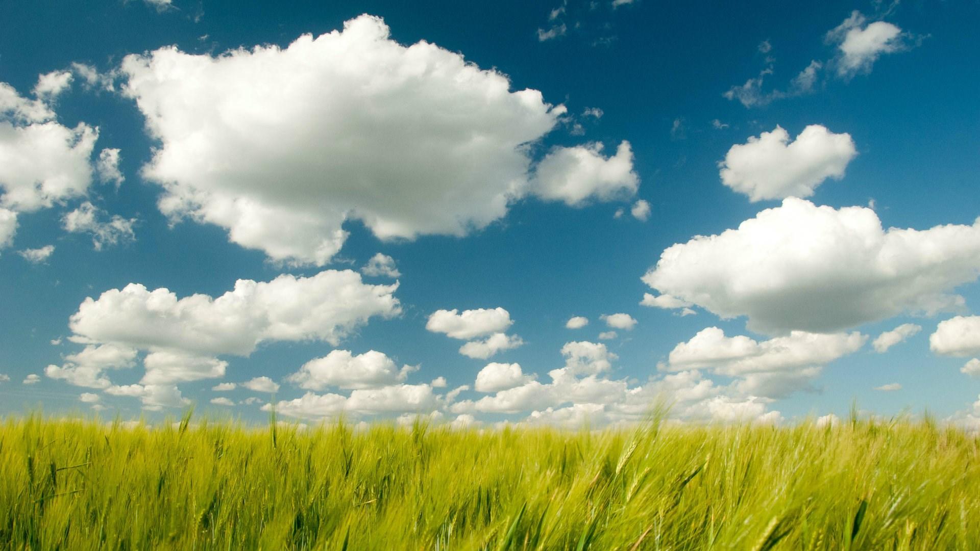 nice cloud
