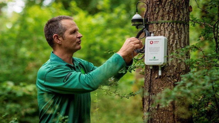 Dr Matthew Wilkinson, Climate Scientist at Forest Research, attaches a Vodafone IoT sensor to a tree in the Alice Holt Forest. Picture by Tom Dymond.
